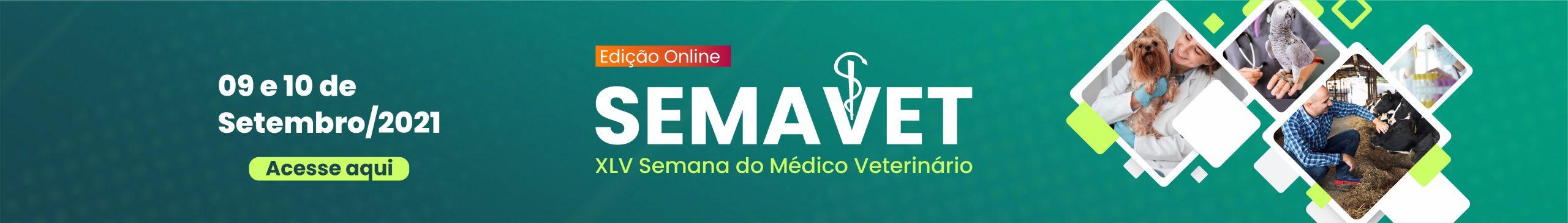 banner site principal